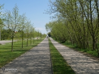Wyjazd drogą rowerową z Białegostoku