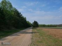 Rezerwat przyrody Jelonka