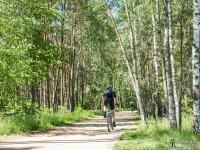 Ścieżka rowerowa wzdłuż brzegu jeziora