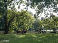 Rowerzyści w Parku Świerklaniec