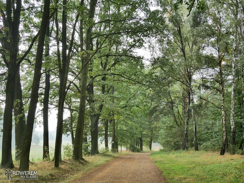 Liswarciański Szlak Rowerowy