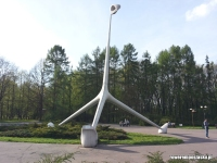 Park Śląski - Żyrafa