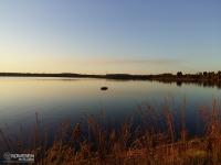Droga leśna na granicy województwa śląskiego i małopolskiego