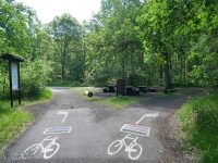 Ciekawe oznakowanie szlaków rowerowych na asfalcie