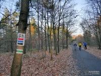 Oznakowanie szlaków w Lasach Murckowskich