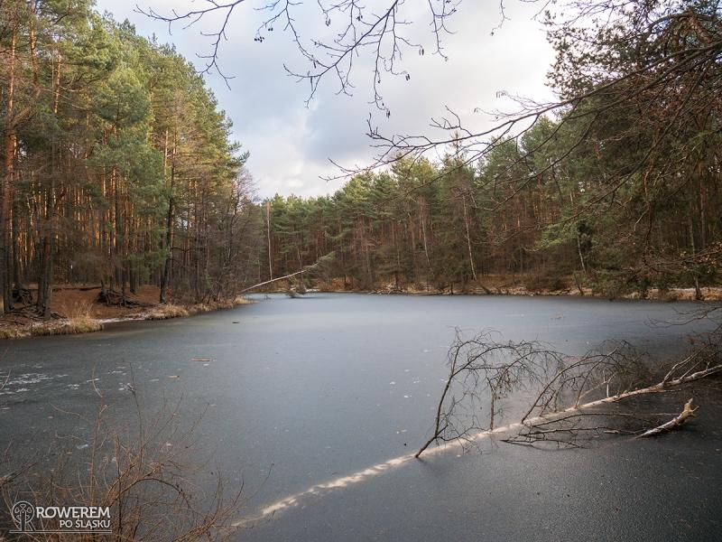 Rezerwat przyrody Doliny Żabnika
