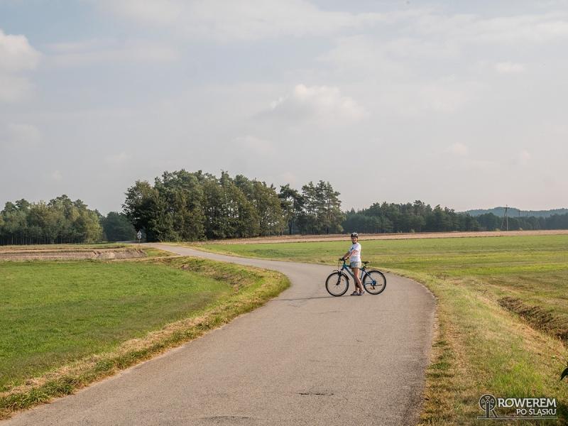 Asfaltówka idealna na rower
