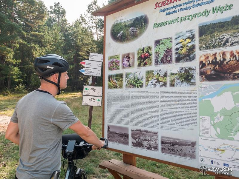 Rezerwat Przyrody Węże - tablica informacyjna i skrzyżowanie szlaków