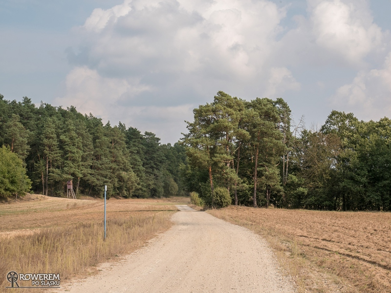 Szutrowy odcinek Załęczańskiego Parku Krajobrazowego