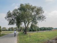 Świetny odcinek między wsią Cieśle a Gligi