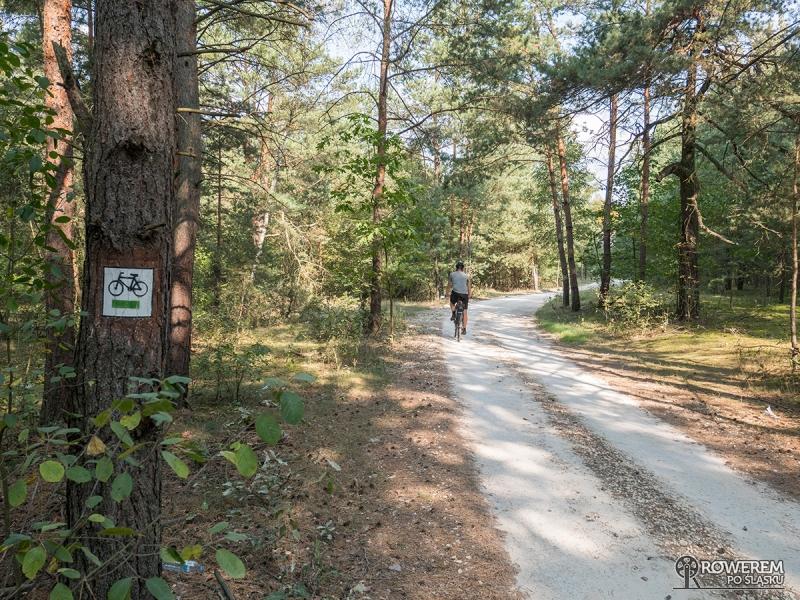 Zielonym szlakiem na Bobrowniki