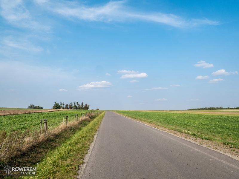 Ziemia wieluńska