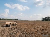 Użytki rolne na obrzeżach Załęczańskiego Parku Krajobrazowego