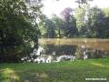 Pszczyna - Park Zamkowy
