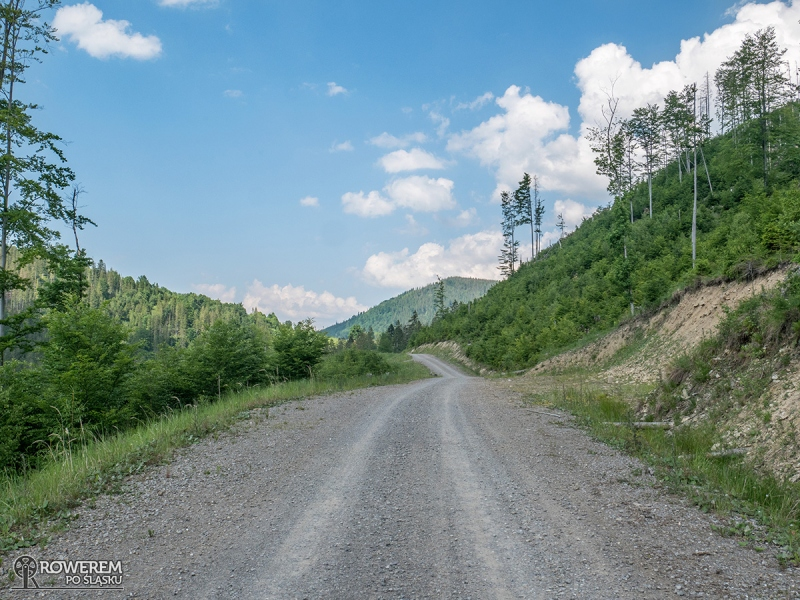 Droga dojazdowa do Mładej Hory