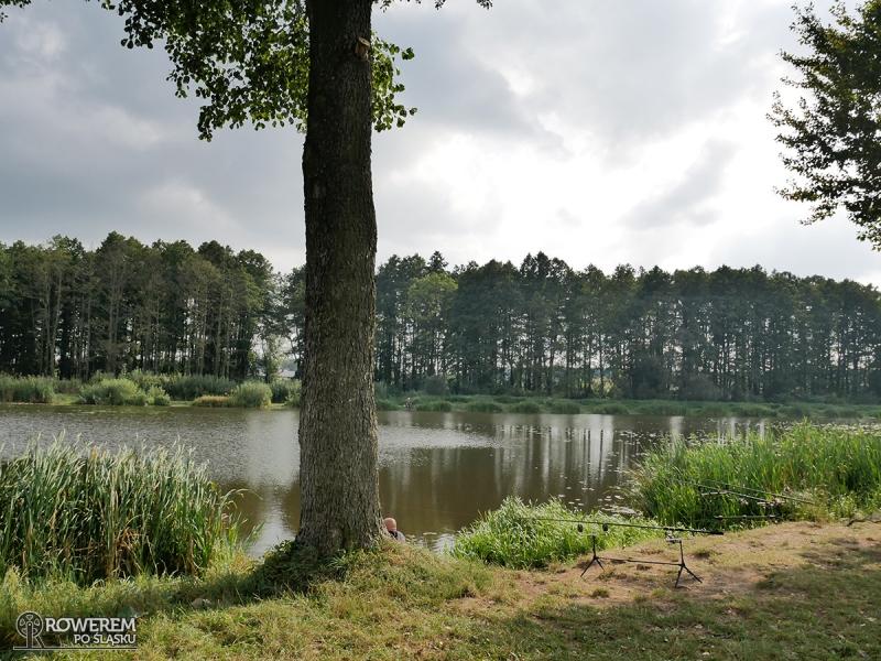 Staw na Liswarcie w Lisowie