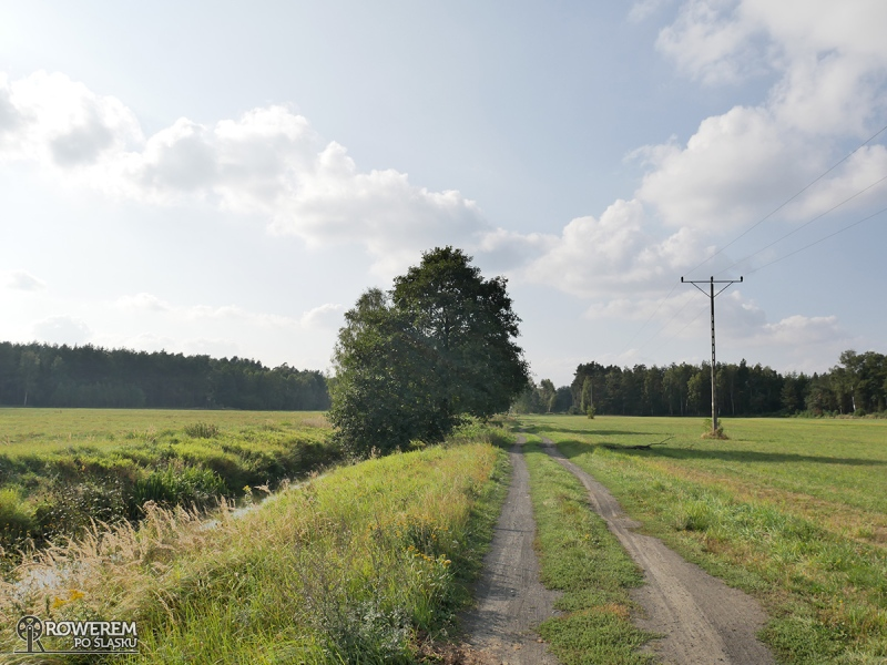 Liswarciański Szlak Rowerowy wzdłuż rzeki