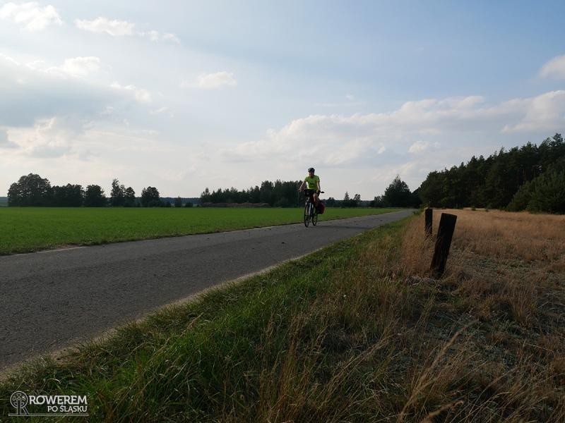 Pola, lasy, łąki i po środku nitka asfaltu - idealne miejsce na rower
