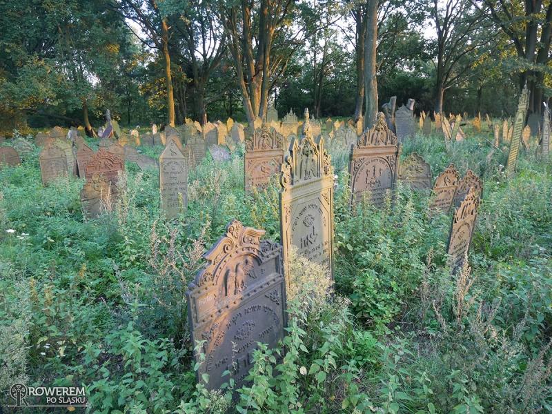 Cmentarz żydowski w Krzepicach