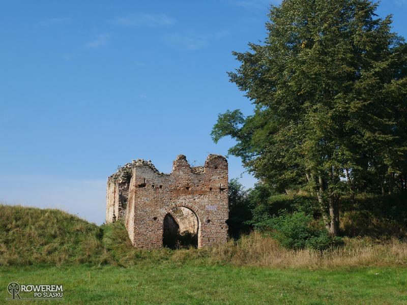 Ruiny zamku w Dankowie