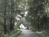 Z lasu do klimatycznej wioski