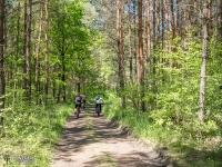 Rowerzyści w Lasach Panewnickich