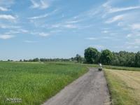 Szutrowe drogi w Mikołowie