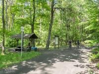 Lasy Panewnickie w Katowicach