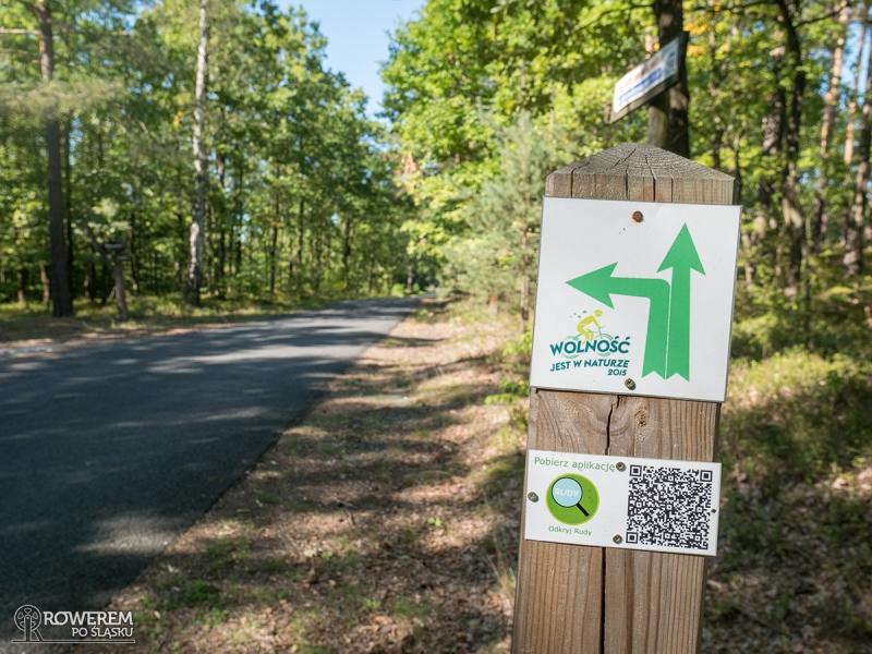 Oznakowanie leśnej ścieżki dydaktycznej