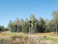 Krajobraz lasów rudzkich