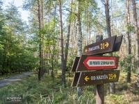 Oznakowanie dróg Lasów Rudzkich