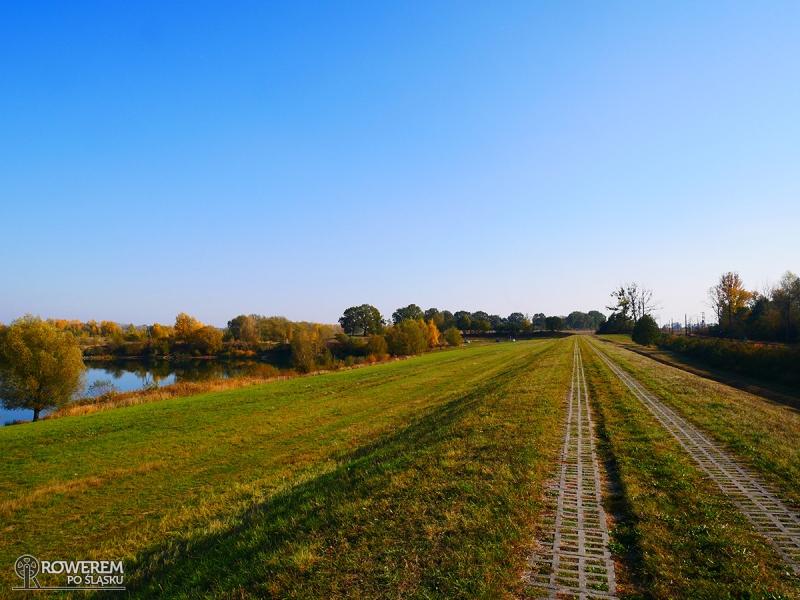 Szlak rowerowy na wałach Odry