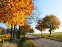 Jesień na ziemi raciborskiej