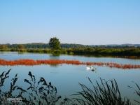 Zespół przyrodniczo-krajobrazowy Wielikąt