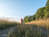 Żółtym szlakiem rowerowym wzdłuż stawów