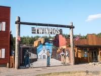Miasteczko Twinpigs w Żorach