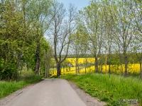 Malownicze tereny w okolicach Słupska