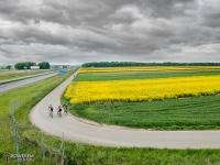 Droga techniczna wzdłuż autostrady A4 w Gliwicach