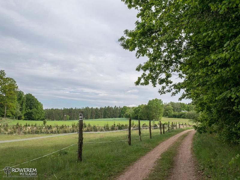 Polna droga wzdłuż pastwiska