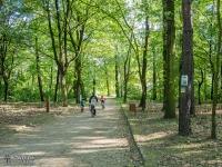 Park Ruda w Rybniku