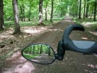 Droga leśna z Rud do Rybnika