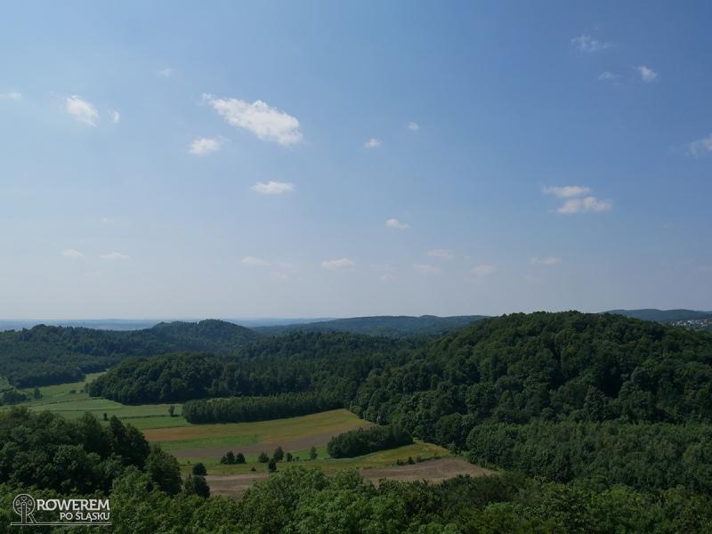 Pasmo Smoleńsko-Niegowonickie - widok z wieży Zamku w Smoleniu