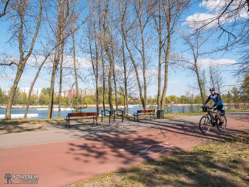 Droga rowerowa na Stawikach w Sosnowcu