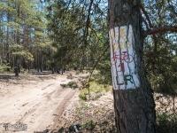 Szlak rowerowy Leśno Rajza w gmini Miasteczko Śląskie