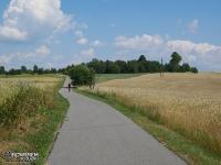 Droga między Żarkami a Mirowem