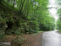 Park Krajobrazowy Dolinki Krakowskie