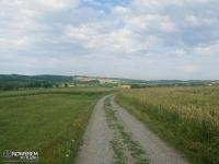 Droga do Brzoskwini