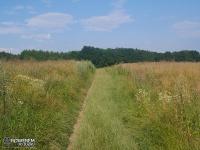 Polna droga do Kleszczowa