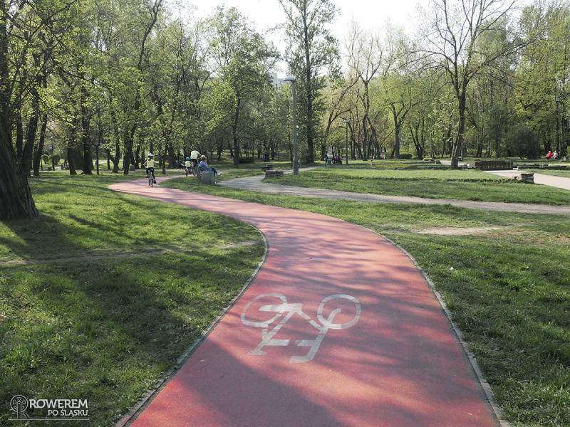 Droga rowerowa w Parku Dworskim