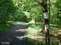 Oznaczenia szlaków rowerowych w Katowicach
